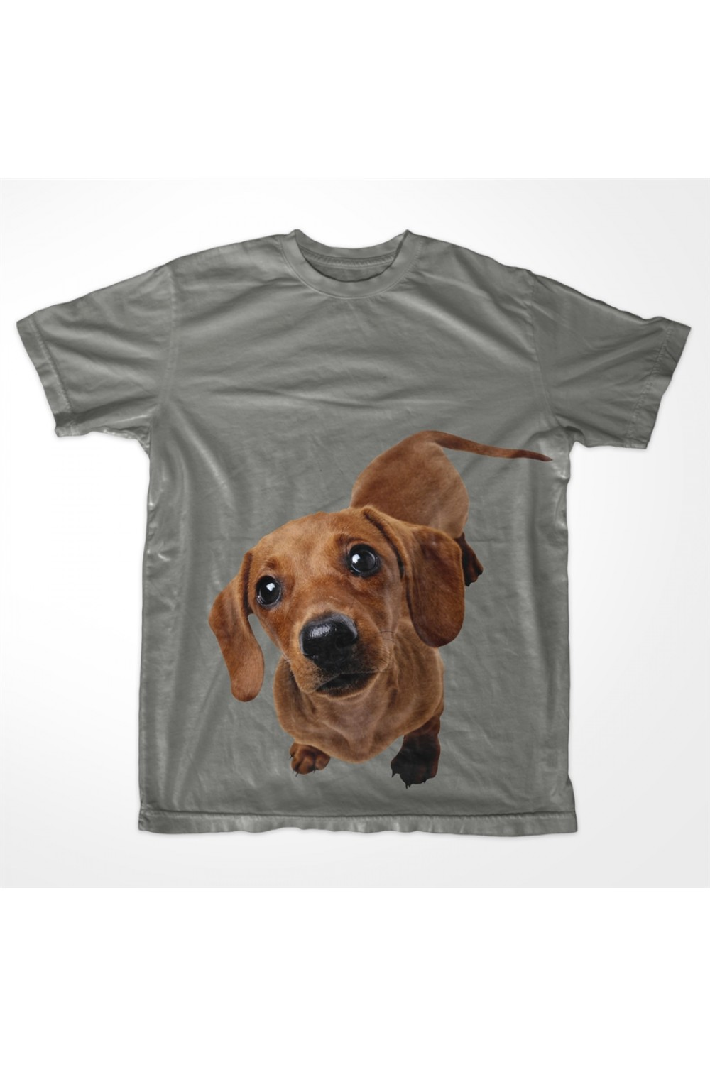 KABOX Men Printed T shirt Dog